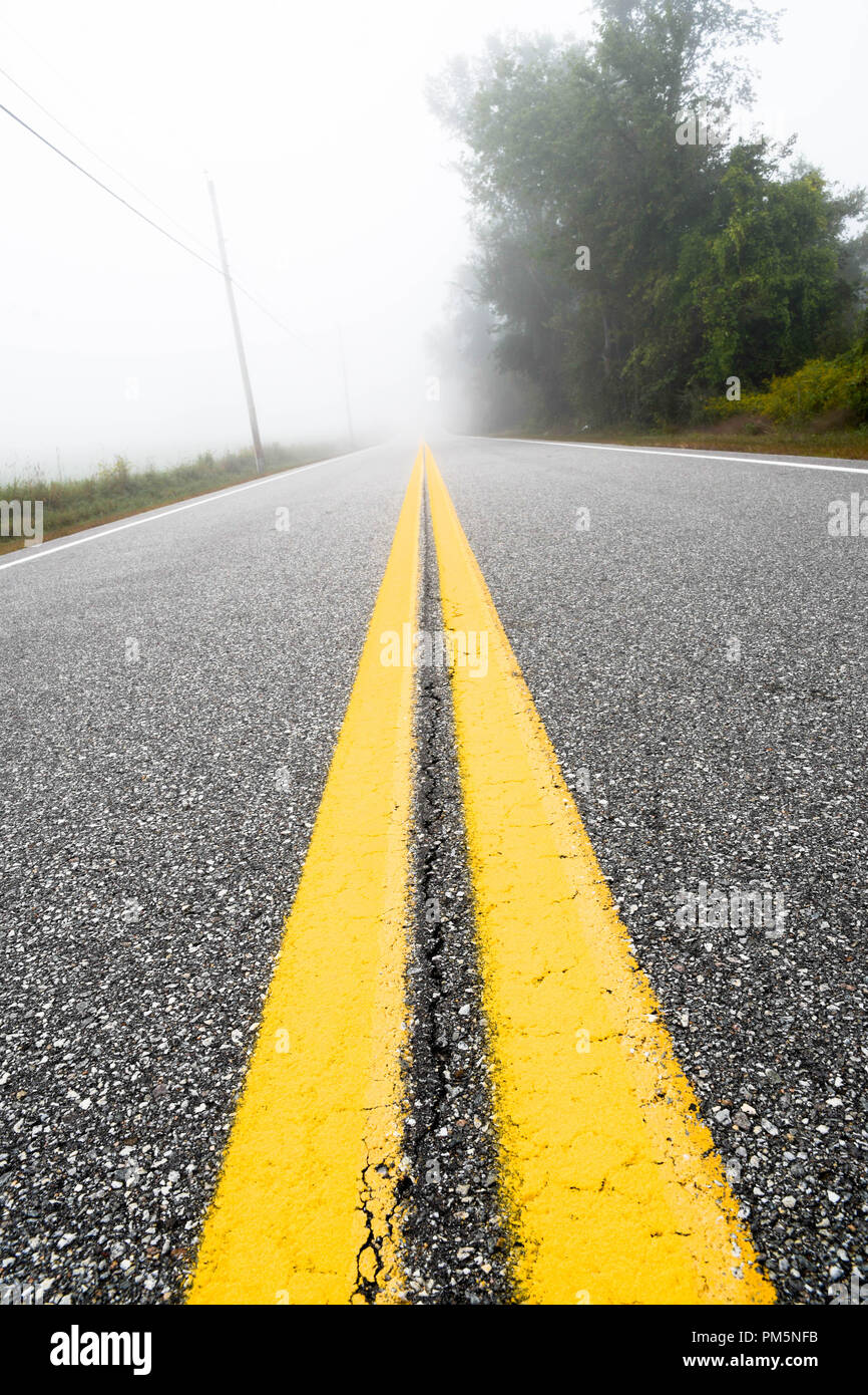 Low perspective of a double yellow line on a long country road on a misty morning. - Stock Image