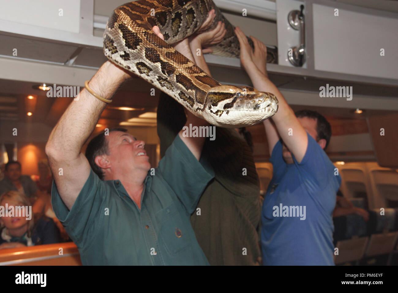 film-still-publicity-still-from-snakes-o