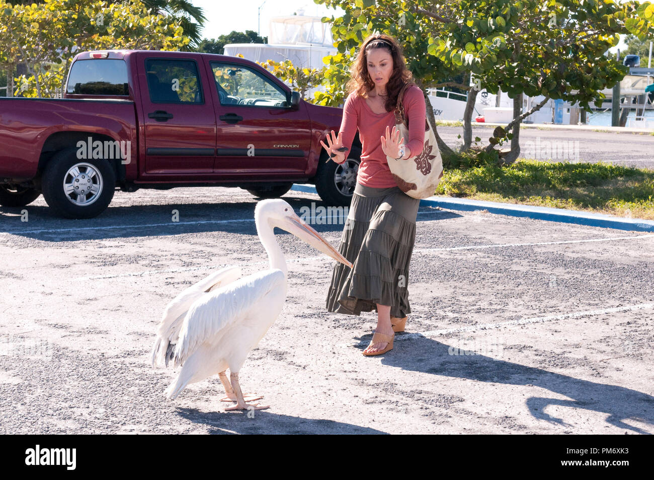 ASHLEY JUDD as Lorraine Nelson is greeted by RUFUS, the mischievous pelican, in Alcon Entertainment's family adventure Dolphin Tale a Warner Bros. Pictures release. - Stock Image