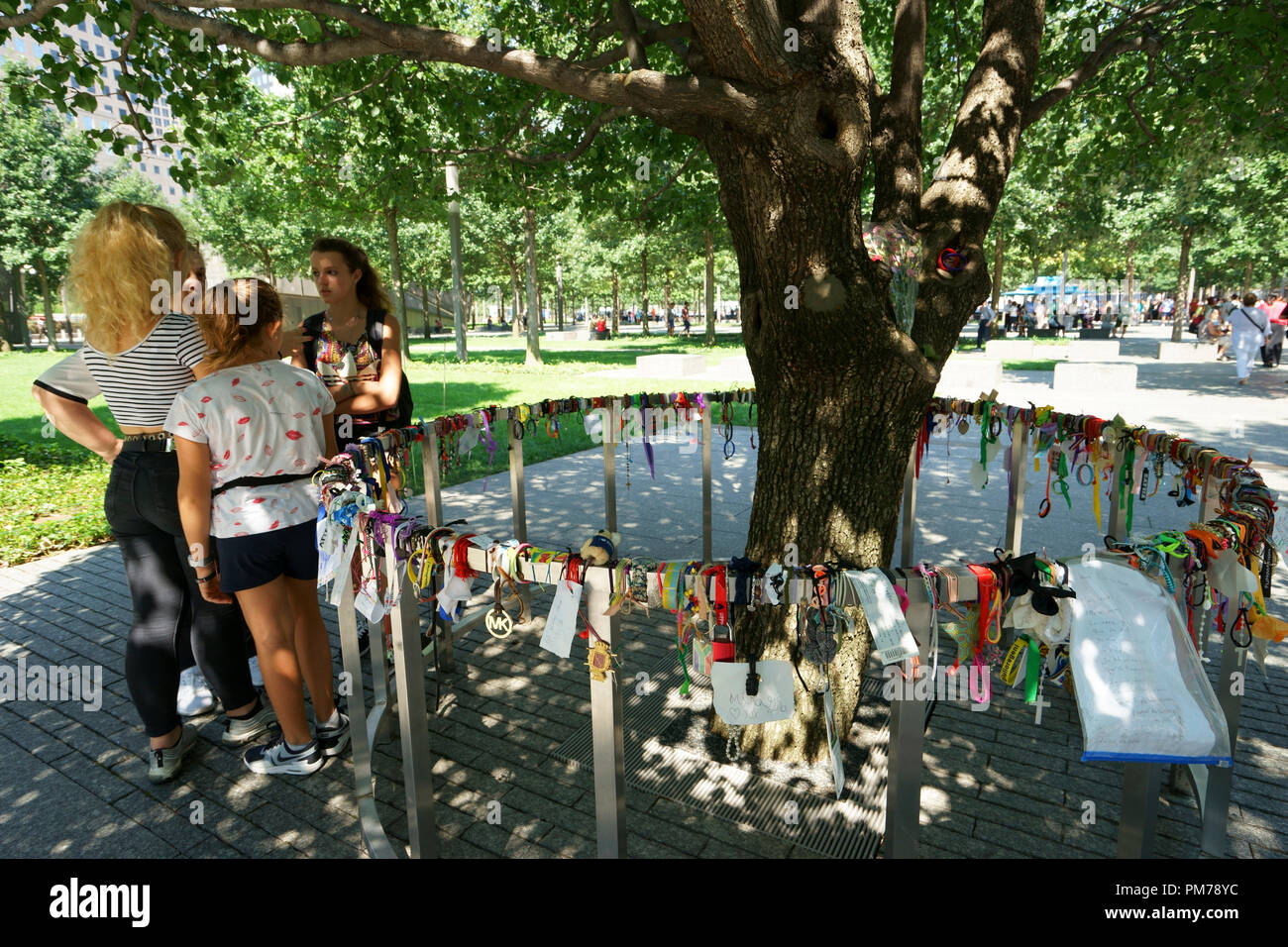 Visitors looking at the Survivor Tree from 9/11terrorist attacks at Ground Zero.National September 11 Memorial and Museum.Manhattan.New York City.USA - Stock Image