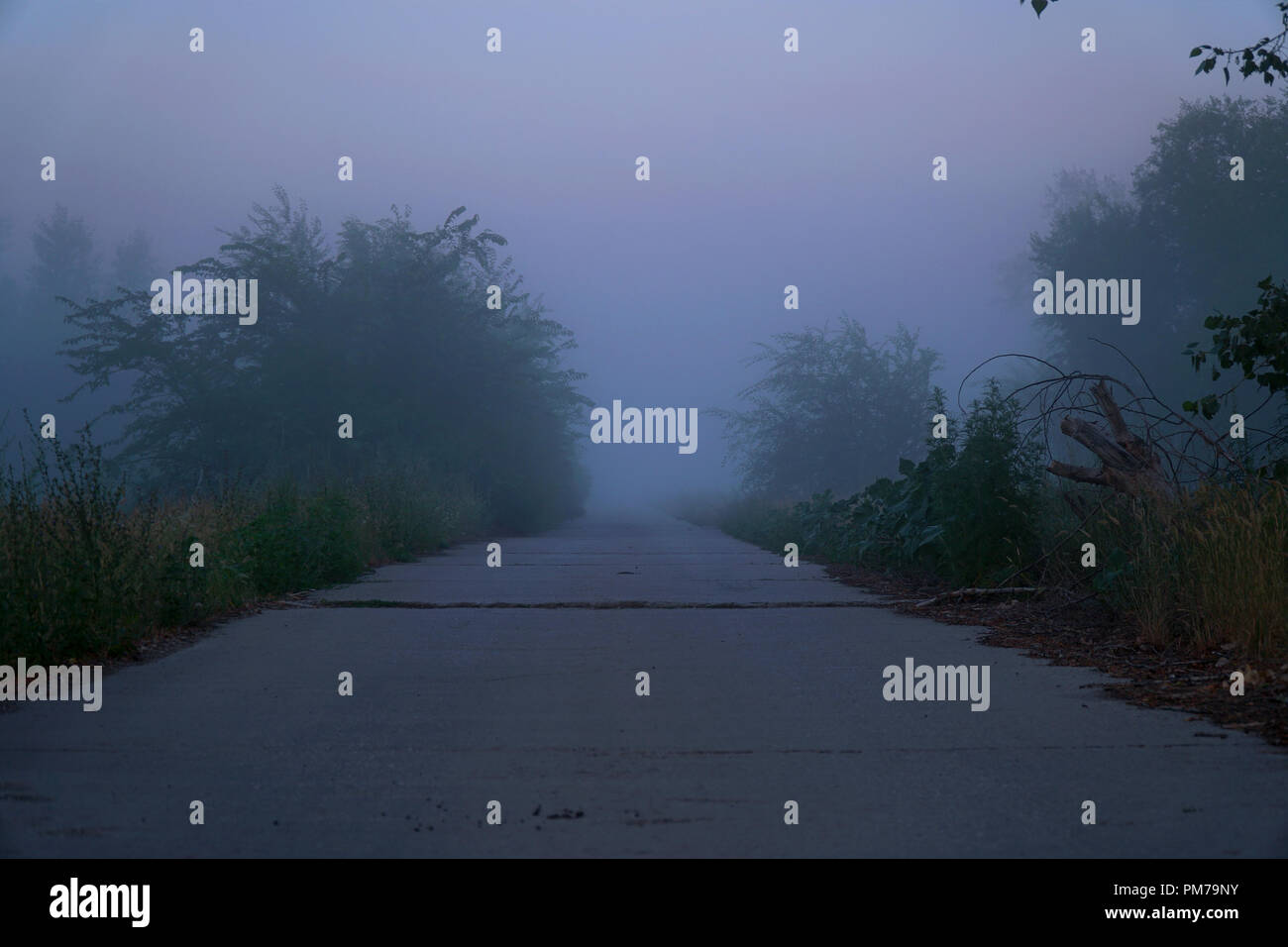 Mystical fog on a country road - Stock Image