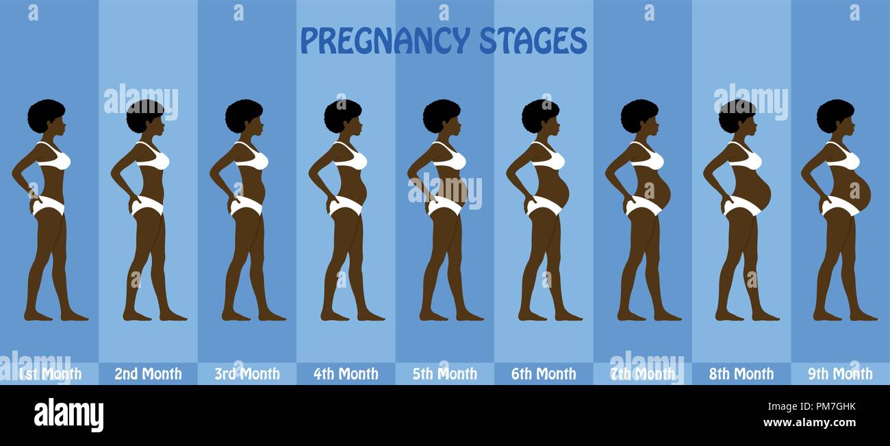 Month by month Pregnancy stages of pregnant afro woman with bikini. All the objects and body stages are in different layers and the text types do not  - Stock Vector