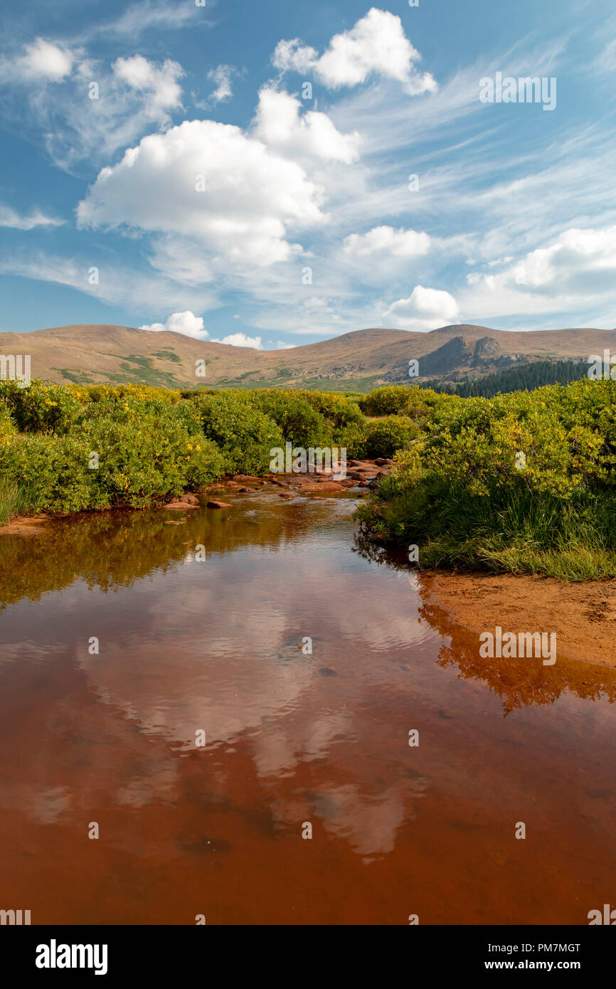 Georgetown, Colorado - A stream in the Rocky Mountains at Guanella Pass, below 14,060-foot Mt. Bierstadt in the Mt. Evans Wilderness Area. - Stock Image