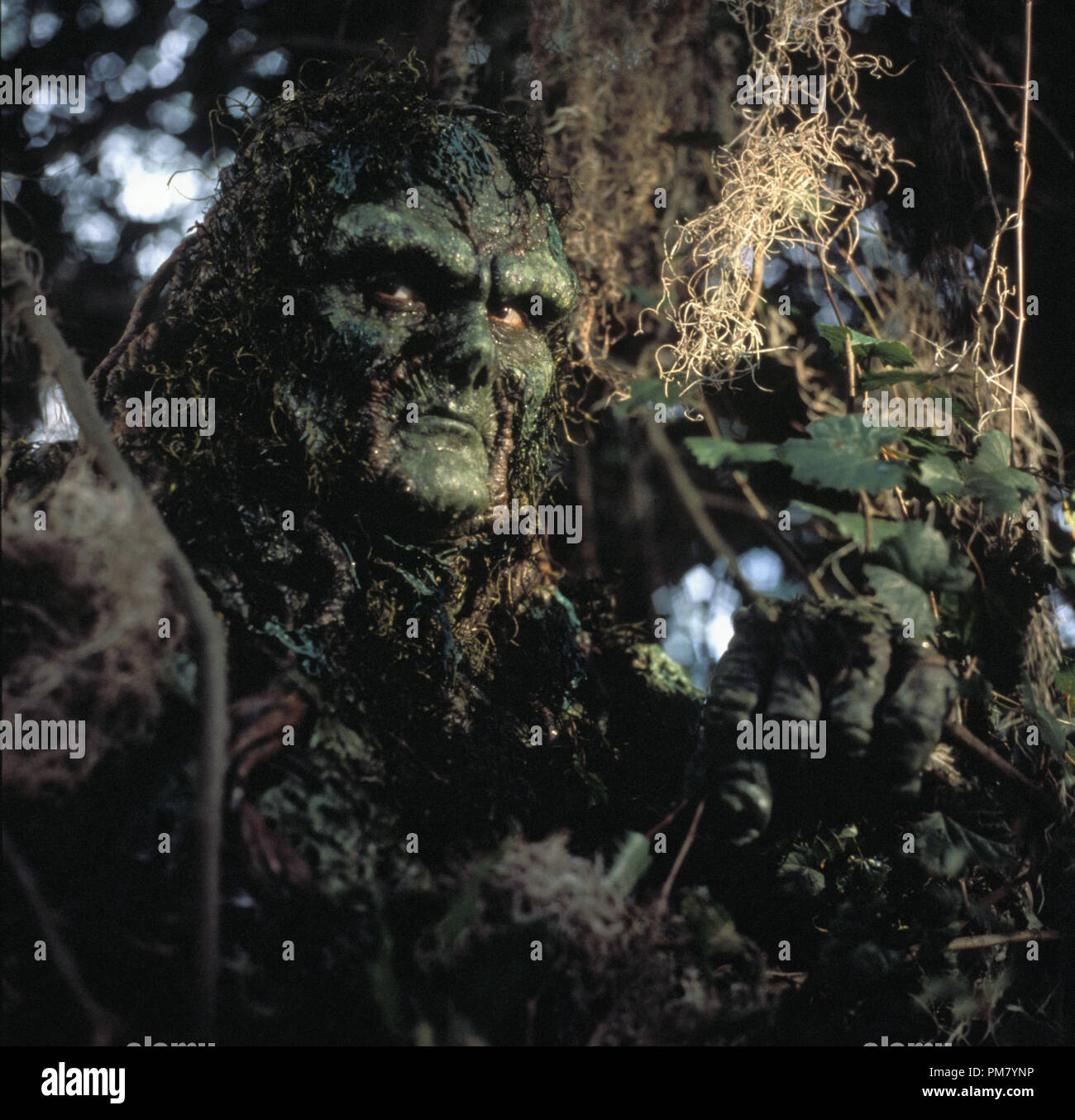Swamp Thing Stock Photos & Swamp Thing Stock Images - Alamy