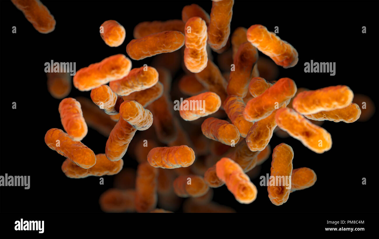 A 3D computer-generated image of a group of aerobic, Gram-negative, Bordetella pertussis bacteria. - Stock Image