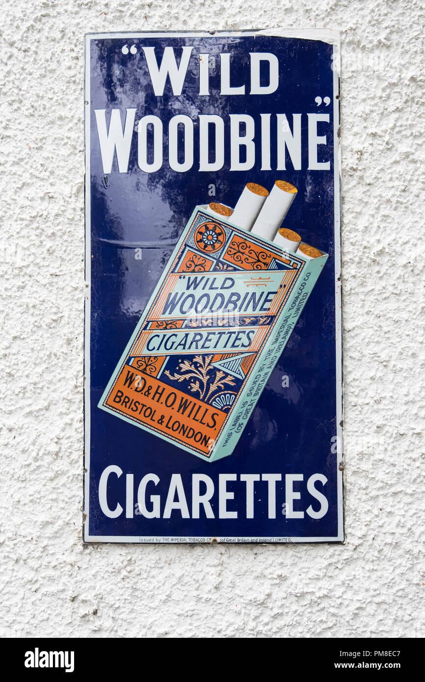 Wills Woodbine Cigarettes - Stock Image