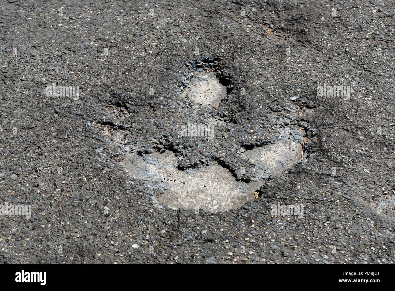 Dinosaur footprints, Royal British Columbia Museum, Victoria, capital of British Columbia, Canada - Stock Image