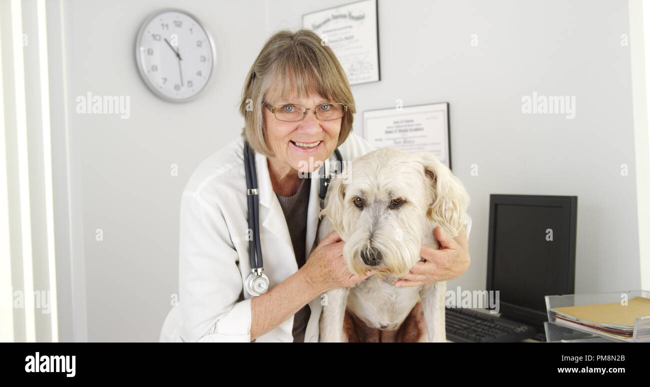 Portrait of happy female veterinarian  and cute dog - Stock Image
