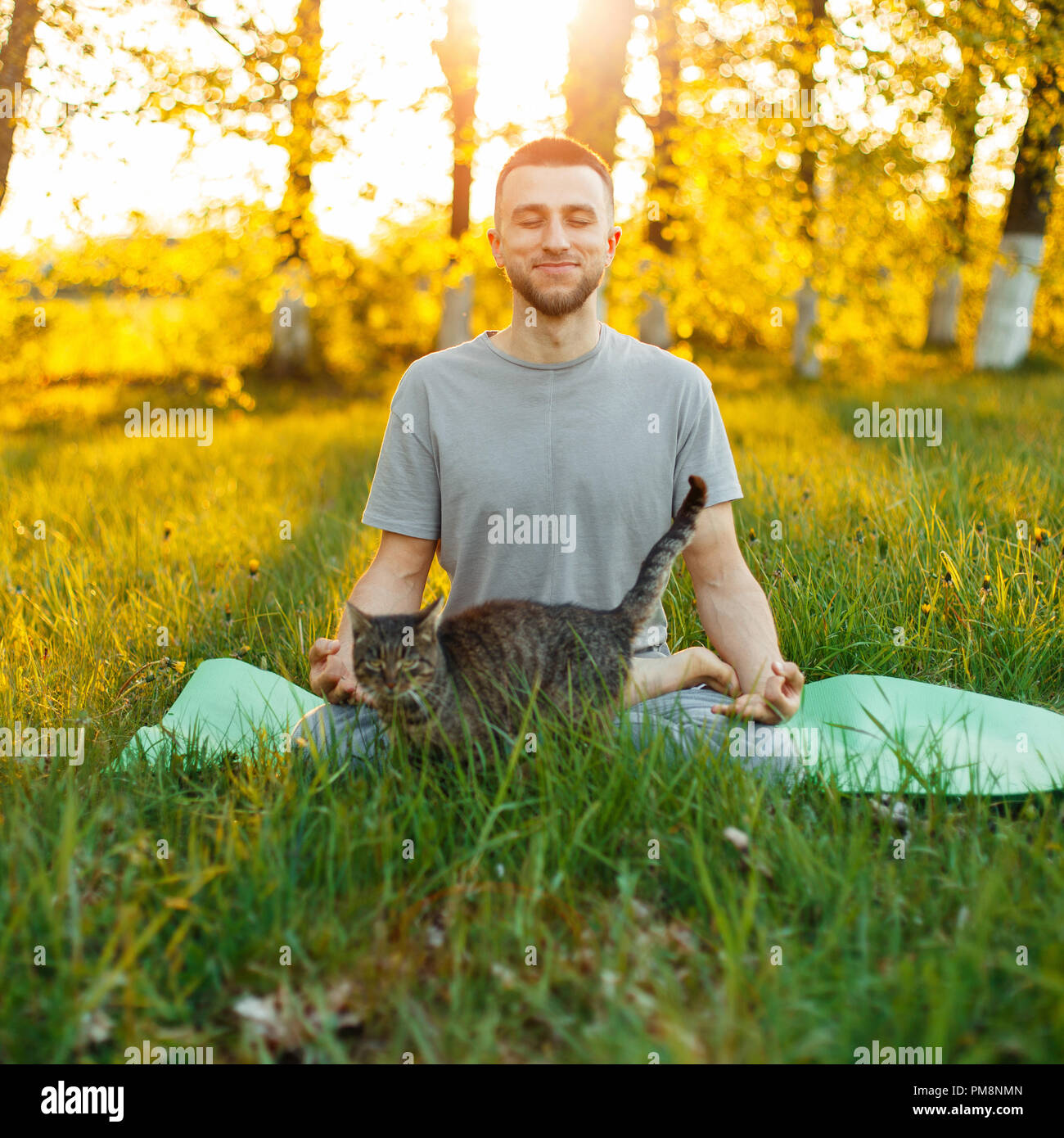 Man practicing yoga lifestyle with cat in the park at sunset, sitting in a lotus pose - Stock Image