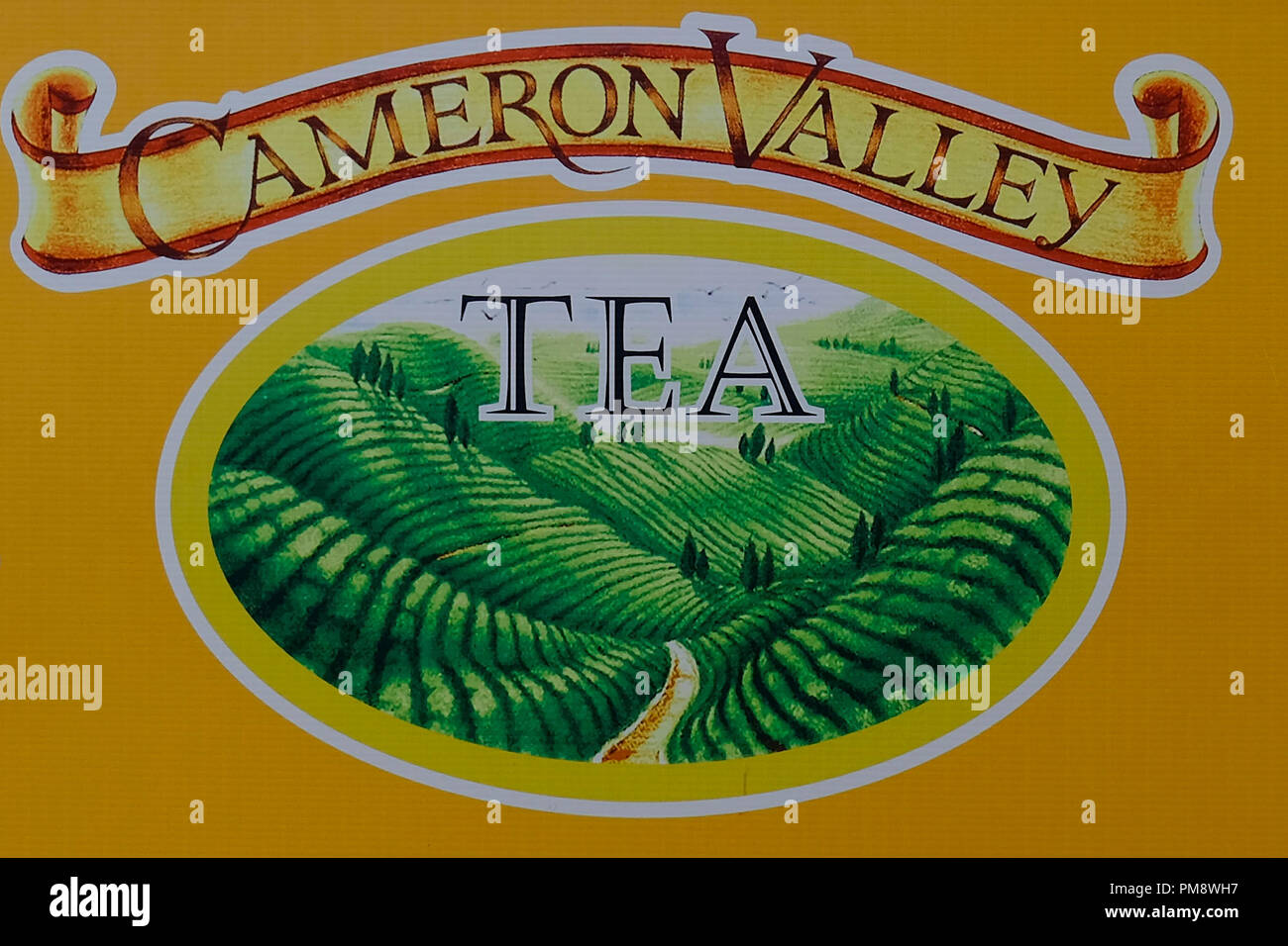 A panel showing a drawing of the Cameron Valley Tea.  The Cameron Highlands is one of a tourist destination located at Pahang, Malaysia and it is named after a British explorer and geologist, William Cameron. Since the discovery of Cameron Highlands, it has been an agricultural site's until to nowadays and the most well known plantation is tea. It is also rich with flora's and fauna's because the uniqueness climate of the Cameron Highlands. - Stock Image