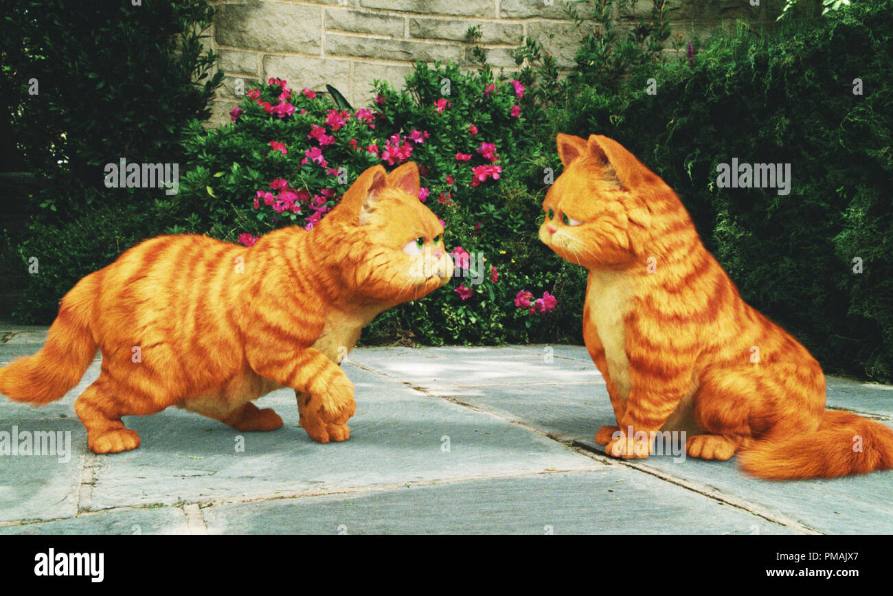 (l to r) Garfield comes face to face -- and paw-to-paw -- with his look-alike, Prince, a royal feline who has inherited a castle. 'GARFIELD: A TAIL OF TWO KITTIES' (2006) Twentieth Century Fox. - Stock Image