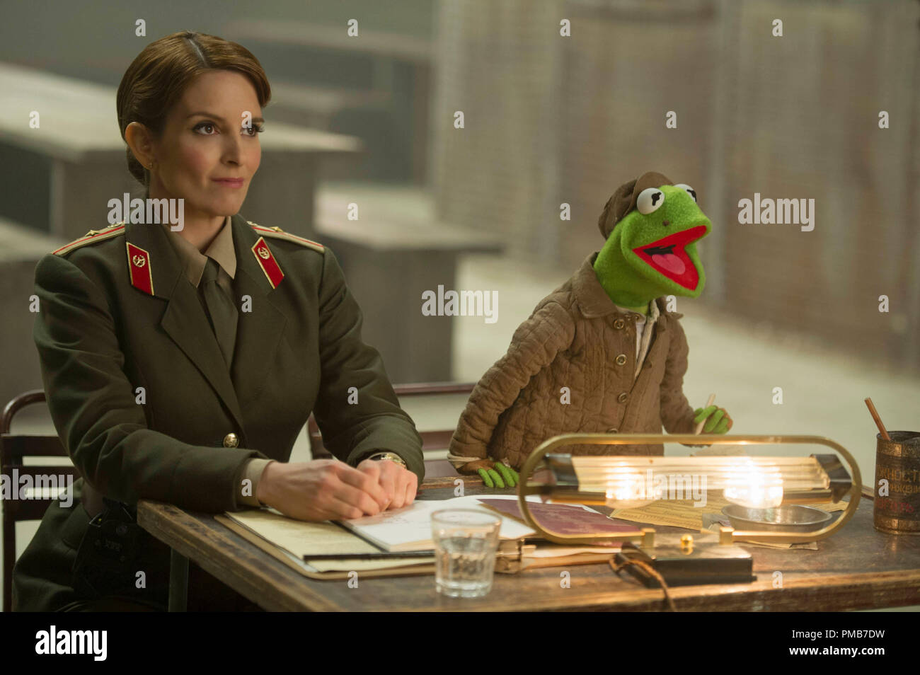 Kermit The Frog Stock Photos & Kermit The Frog Stock