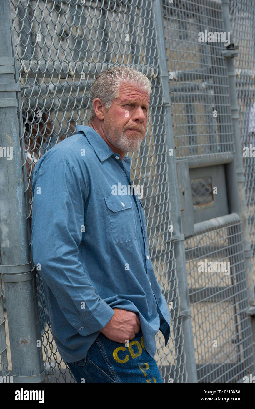 SONS OF ANARCHY Poenitentia -- Episode 603 -- Airs Tuesday, September 24, 10:00 pm e/p) -- Pictured: Ron Perlman as Clay Morrow -- CR: Prashant Gupta/FX - Stock Image