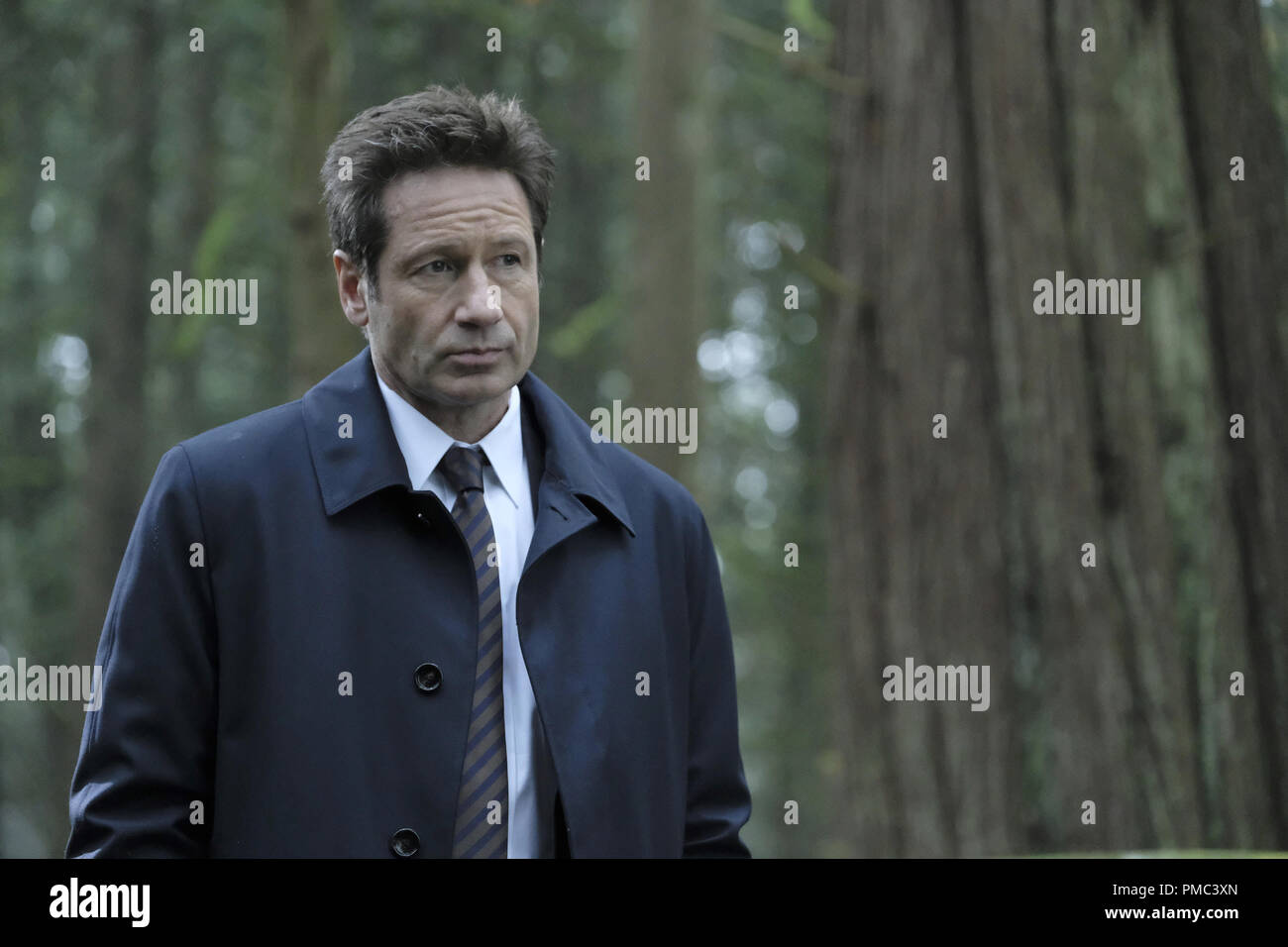 THE X-FILES:  David Duchovny in the 'Kitten' episode of THE X-FILES on Fox. © 2018 Fox Broadcasting Co.  Cr:  Eric Millner/Fox - Stock Image