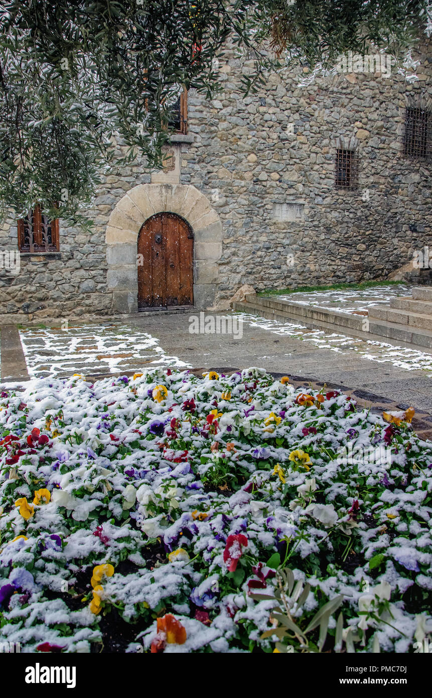Beautiful street of Andorra la Vella city caught by sudden snow. Blooming colorful live flowers under snow cover at foreground. General Council of And - Stock Image