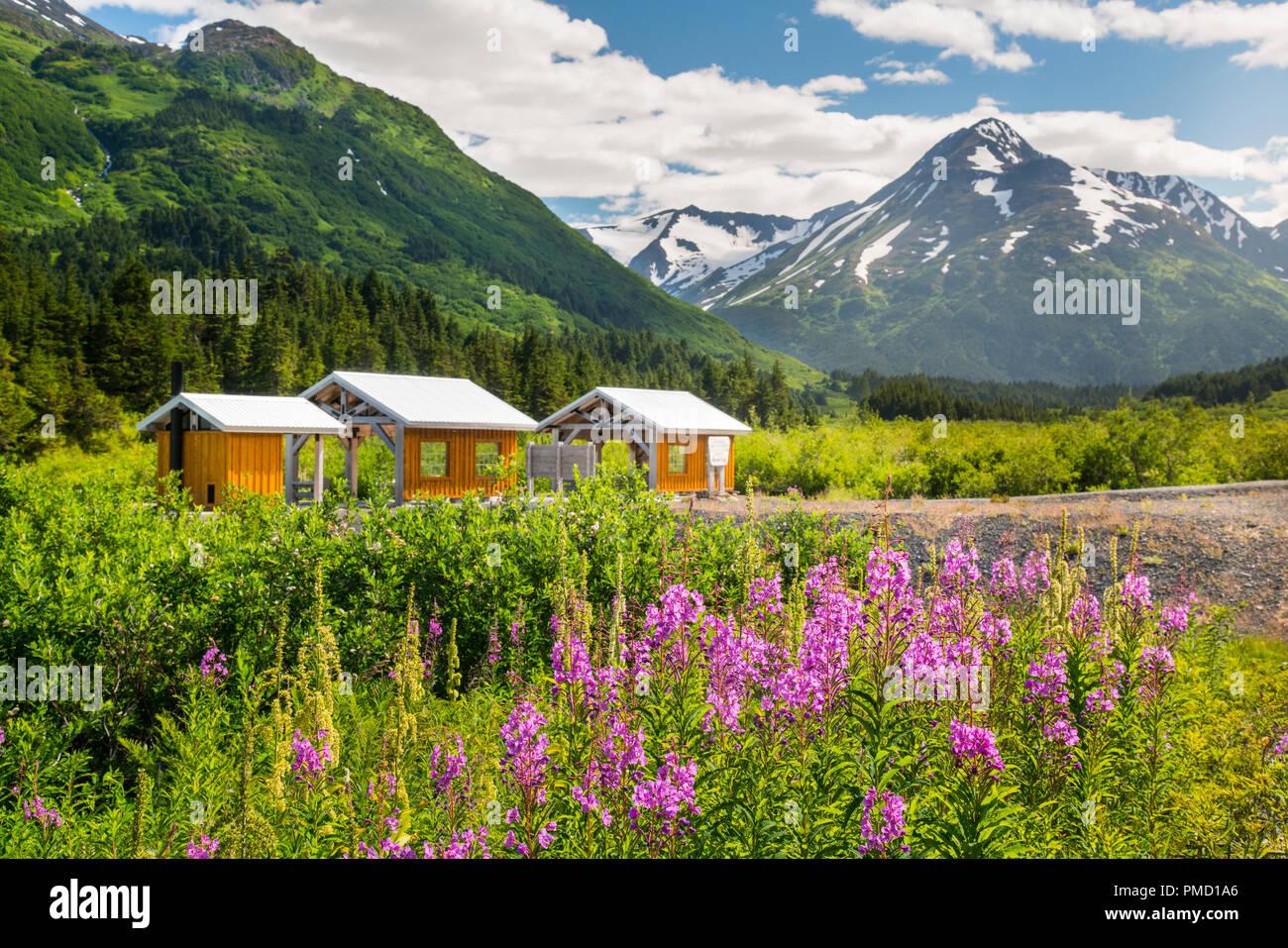Alaska Railroad Glacier Discovery train trip,  Chugach National Forest, Alaska. - Stock Image