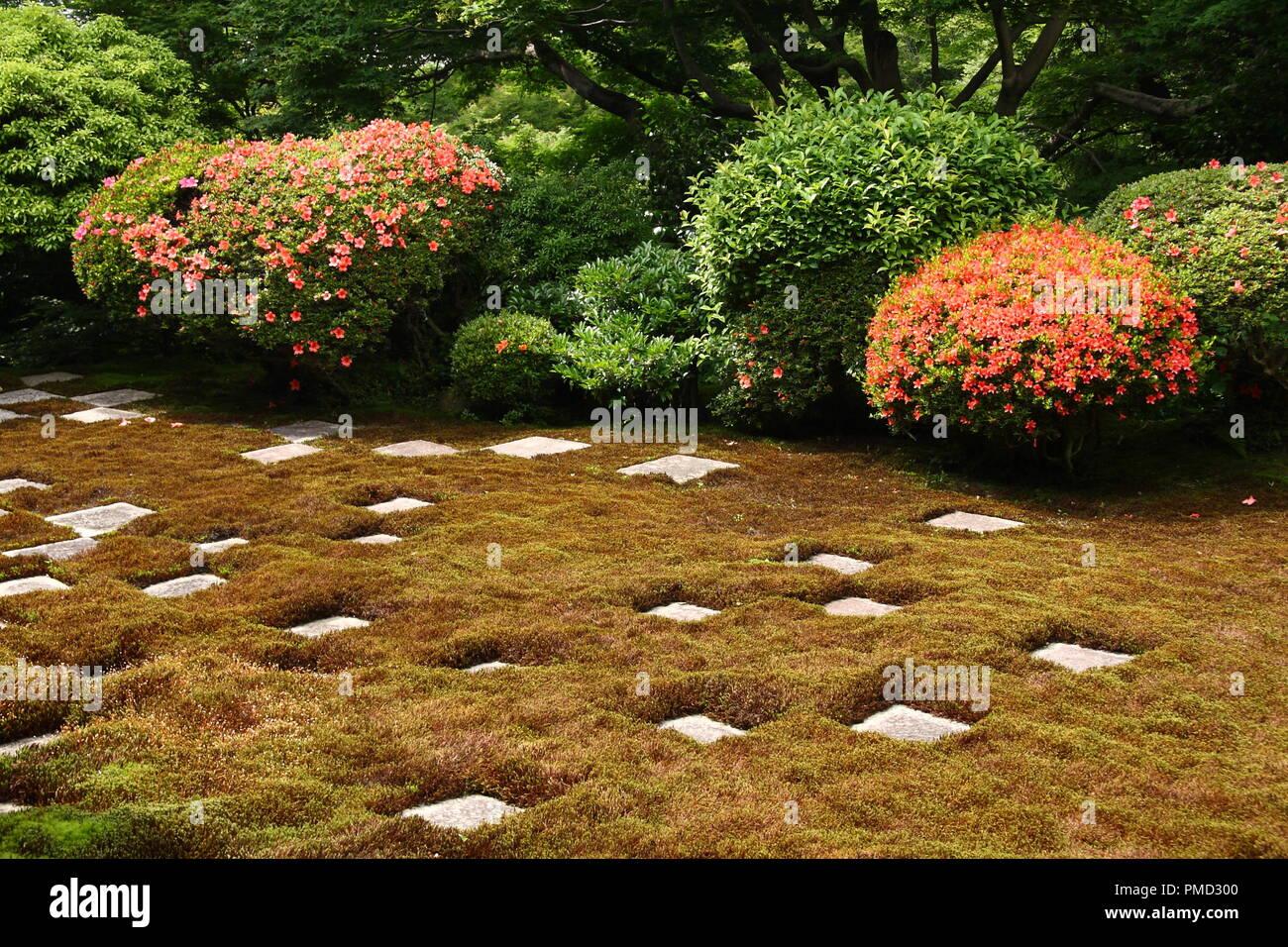 Garden Chess Stock Photos & Garden Chess Stock Images - Alamy