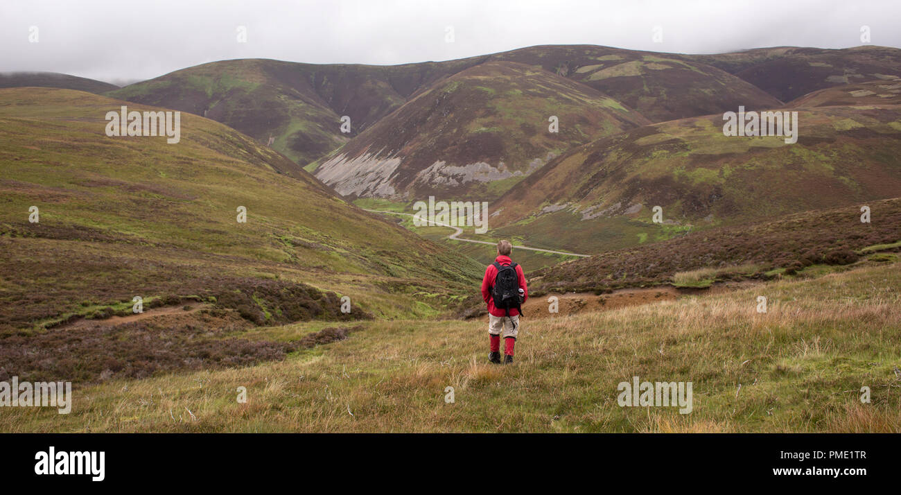 Looking across Mennock Pass to Wether Hill and White Dod. Walking down to the ancient path from Mennock to Wanlockhead the Dempster Road - Stock Image