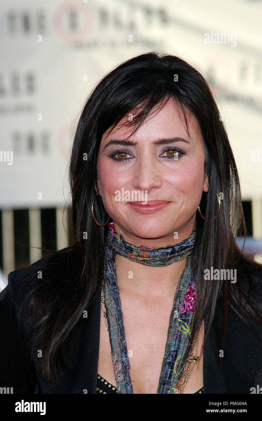The X-Files: I Want to Believe Premiere  Pamela Adlon 7-23-2008 / Mann's Grauman Chinese Theatre / Hollywood, CA / 20th Century Fox / Photo © Joseph Martinez / Picturelux  File Reference # 23571_0081JM   For Editorial Use Only -  All Rights Reserved - Stock Image