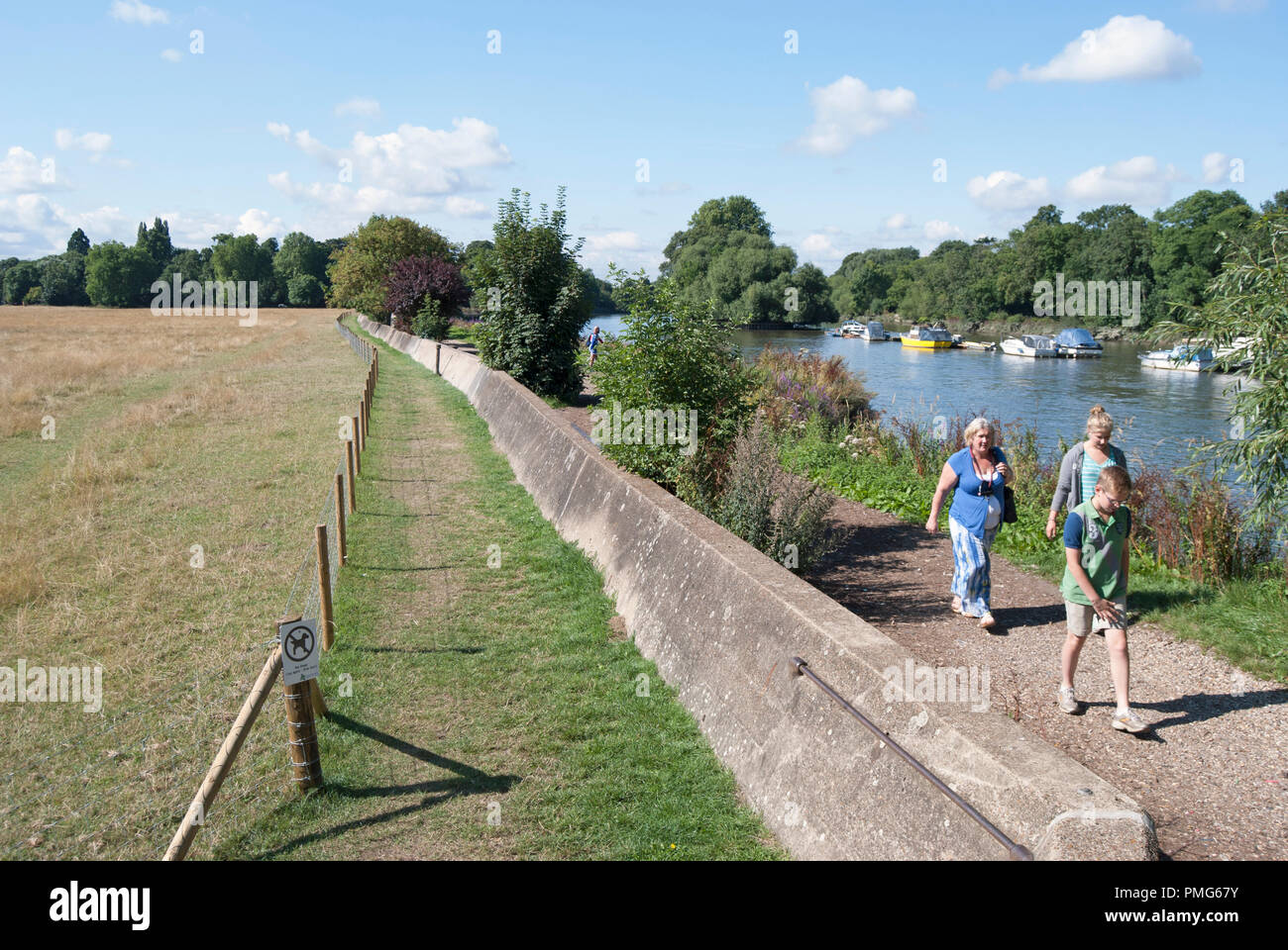 walkers on a towpath beside the river thames adjacent to petersham meadows, surrey, england - Stock Image