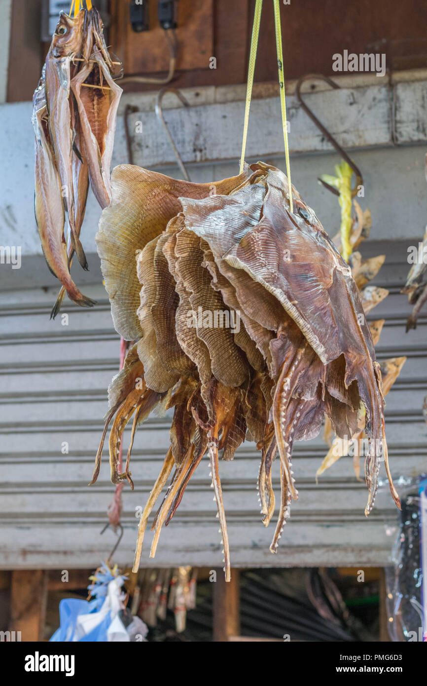 Hanging Dried Skate Fish- several dried Skates hanging, with other dried fish hanging in the background, in Seoul, South Korea - Stock Image