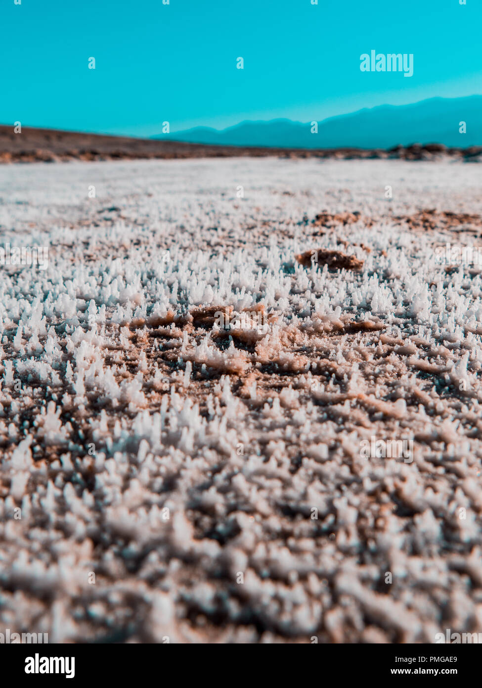Salt is heaping up from the soil on a sunny day in the hart of dead valley - Stock Image