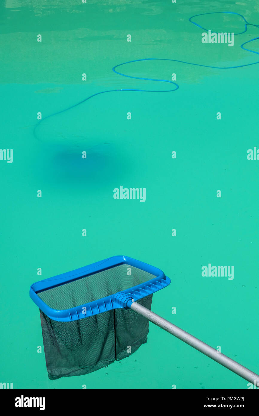 Swimming pool maintenance - a pool skimmer net waits above a ...