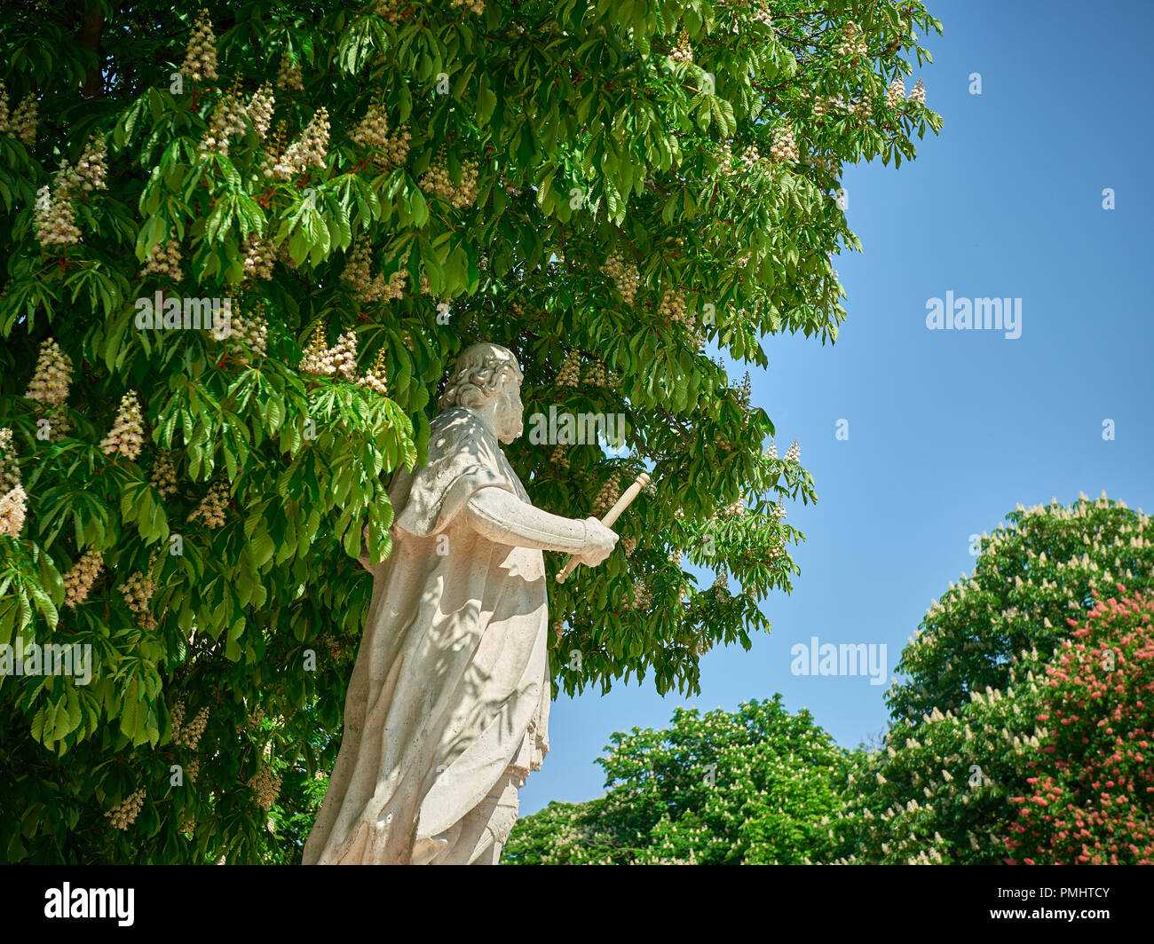 White marble statue in the public park under the blooming chestnut tree in the sunny day - Stock Image