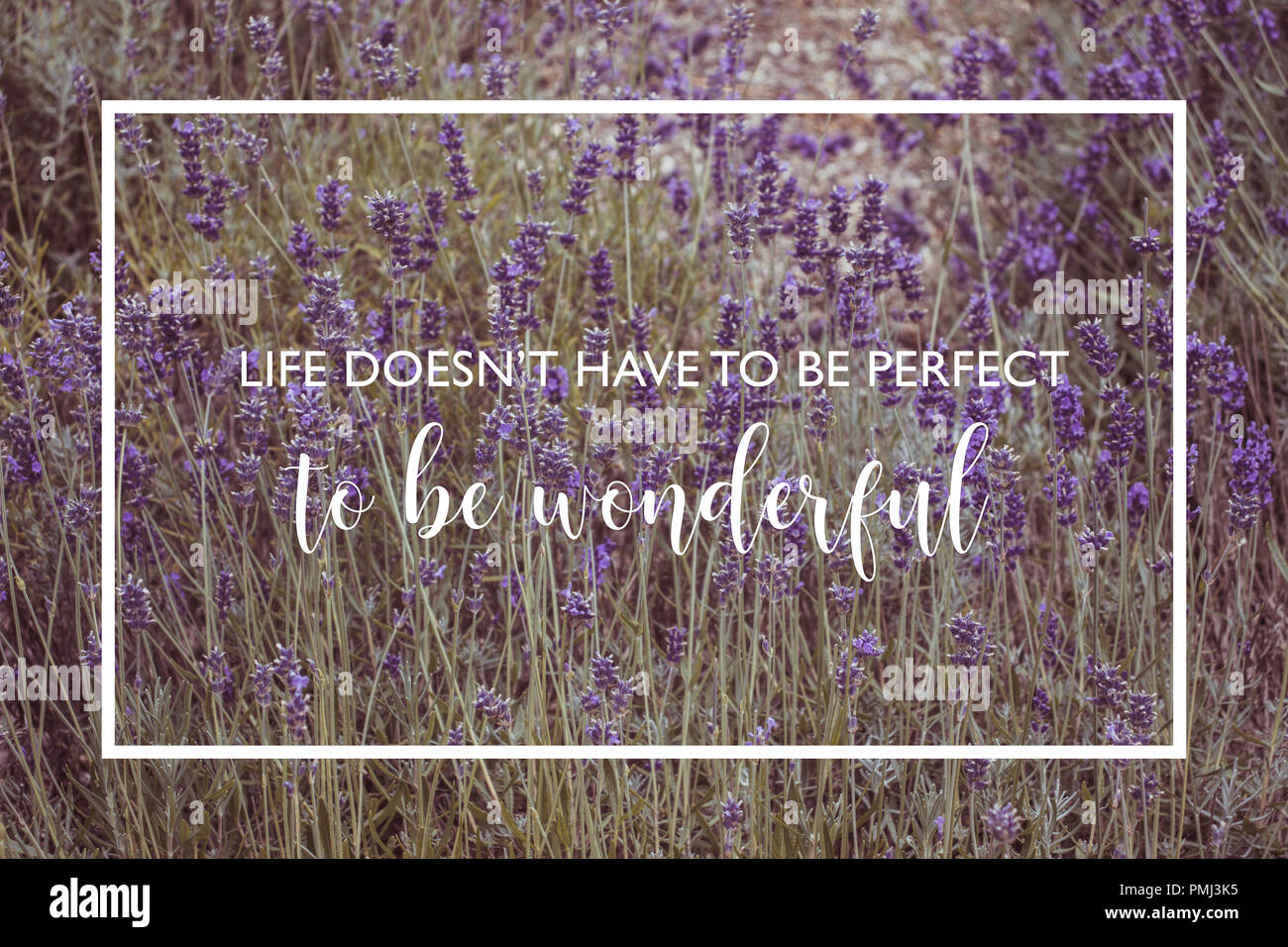 Life Quotes Purple Stock Photos Life Quotes Purple Stock Images