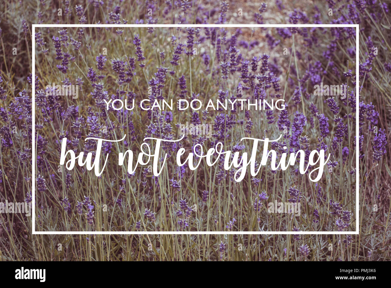 You can do anything but not everything - motivational quote on lavender fields - Stock Image