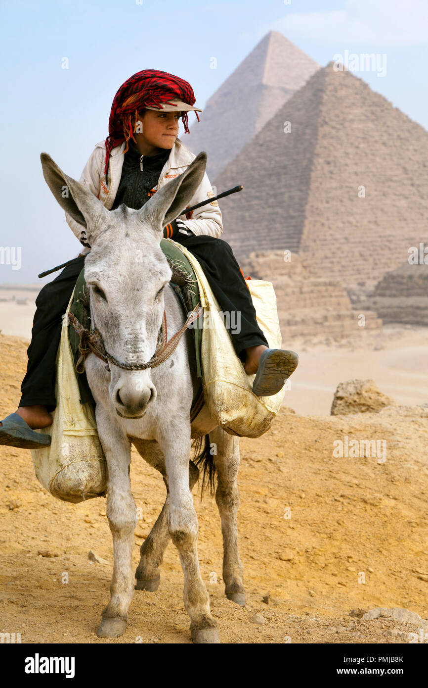 A donkey boy climbs a hill in a background of the Great Pyramids of Egypt - Stock Image