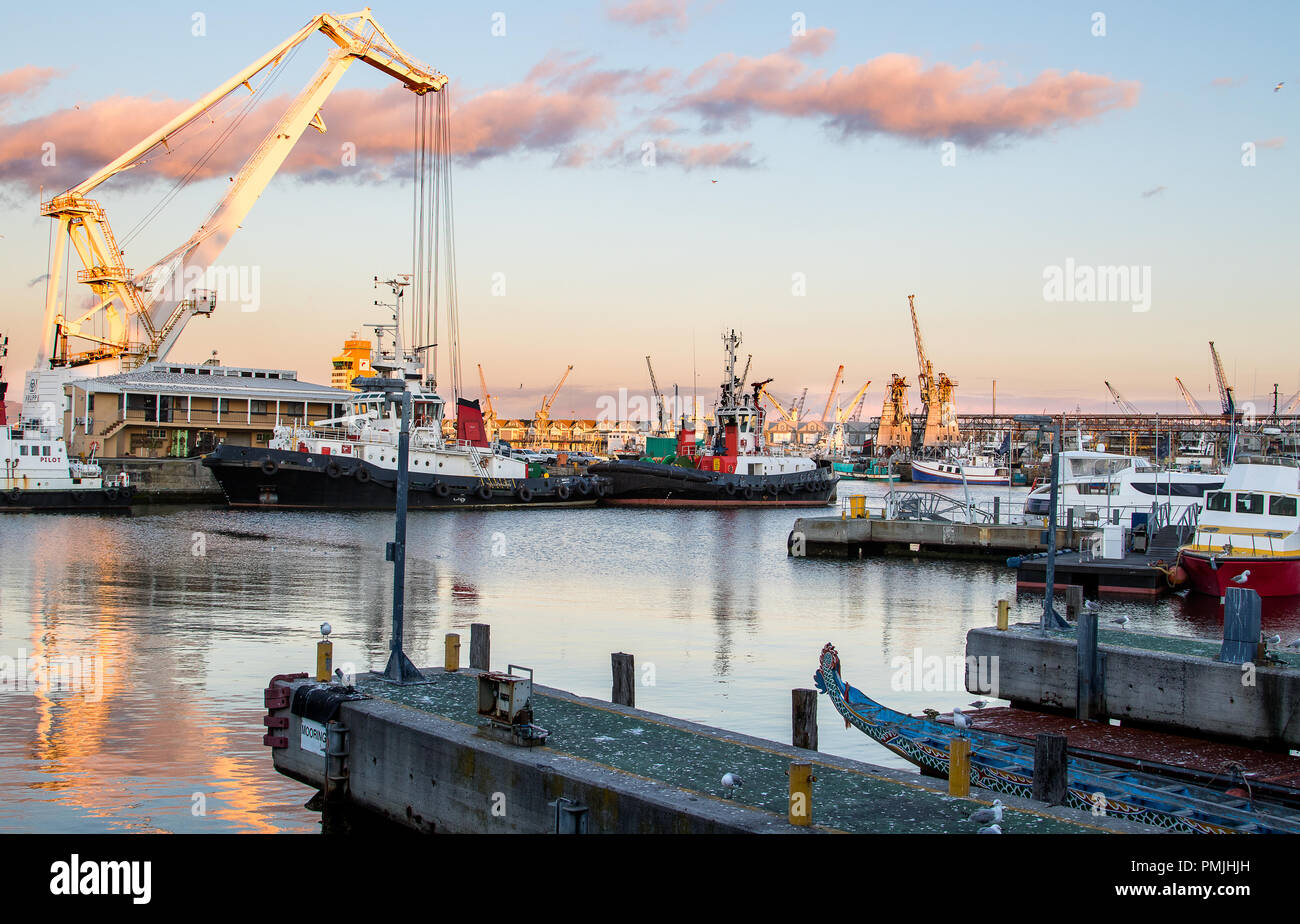 The ships at the port of Cape Town in South Africa - Stock Image
