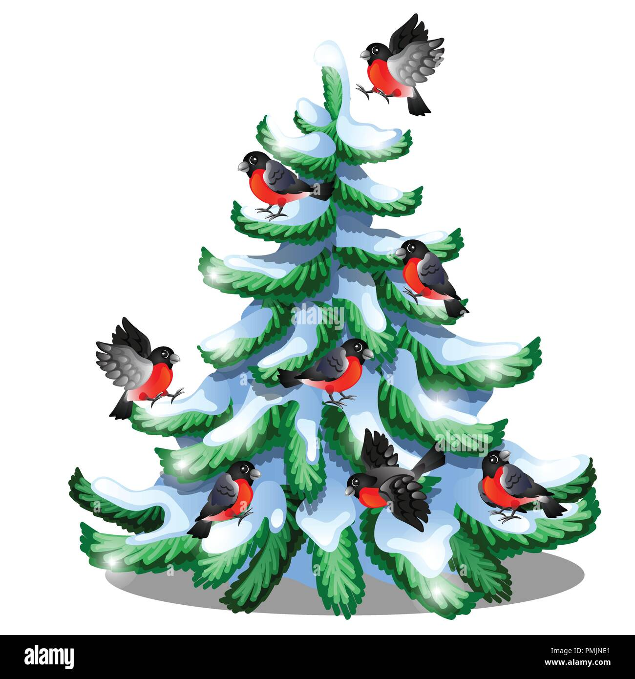 Merry Bullfinches Sit On A Snowy Spruce Isolated On White Background