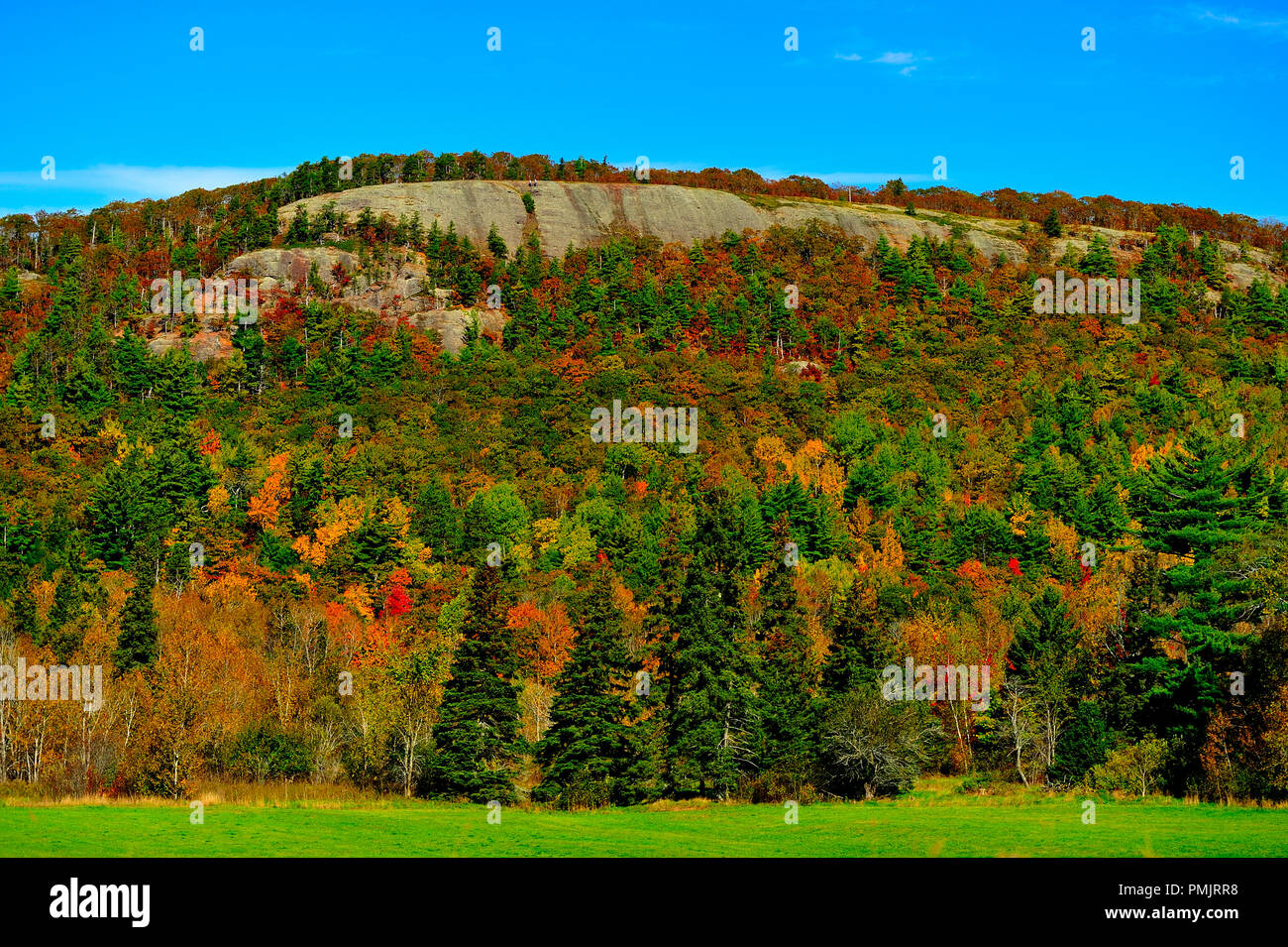 A fall landscape image of a rock hillside with its deciduous trees changing to the bright colours of an Atlantic Canada fall near Sussex New Brunswick - Stock Image