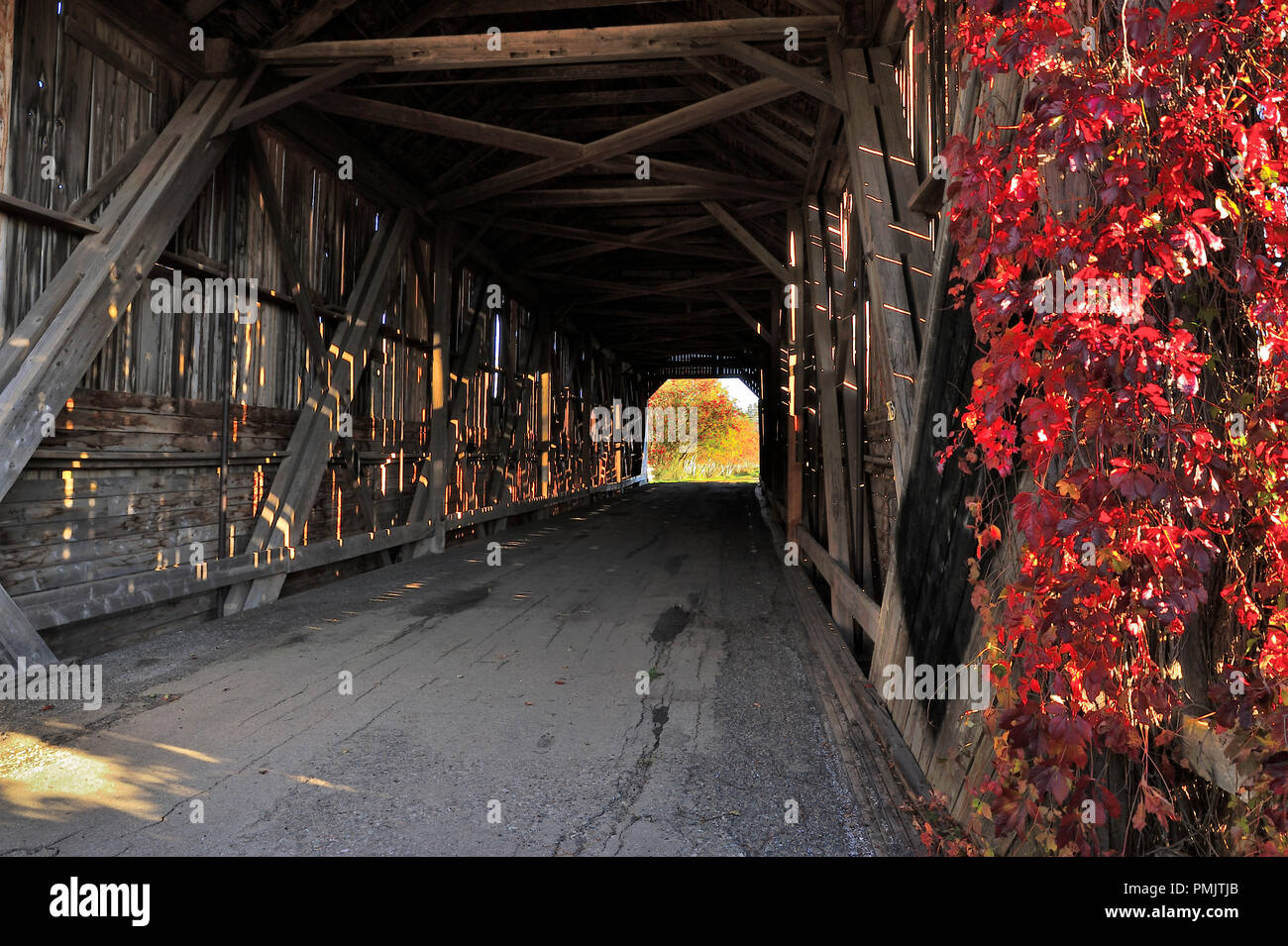 A horizontal landscape image of the inside of a covered bridge showing the heavy wood beams that make up the structure and the opening on the other si - Stock Image