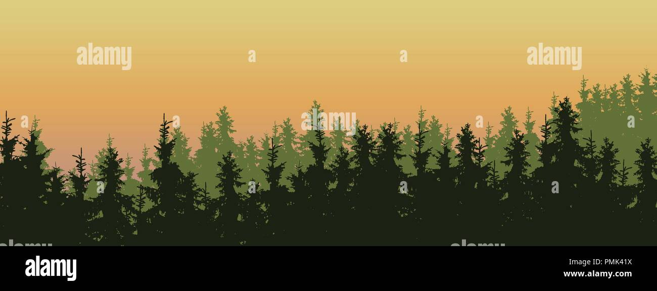 wide screen vector illustration of a green coniferous forest with spruces and pines in three layers, under a orange morning sky - with space for text - Stock Vector