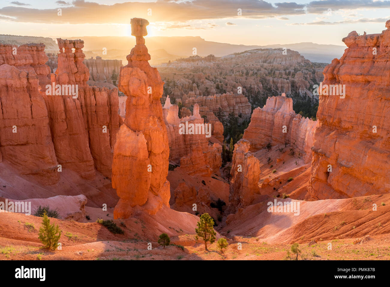 Thor's Hammer glowing in the morning light, Bryce Canyon National Park - Stock Image