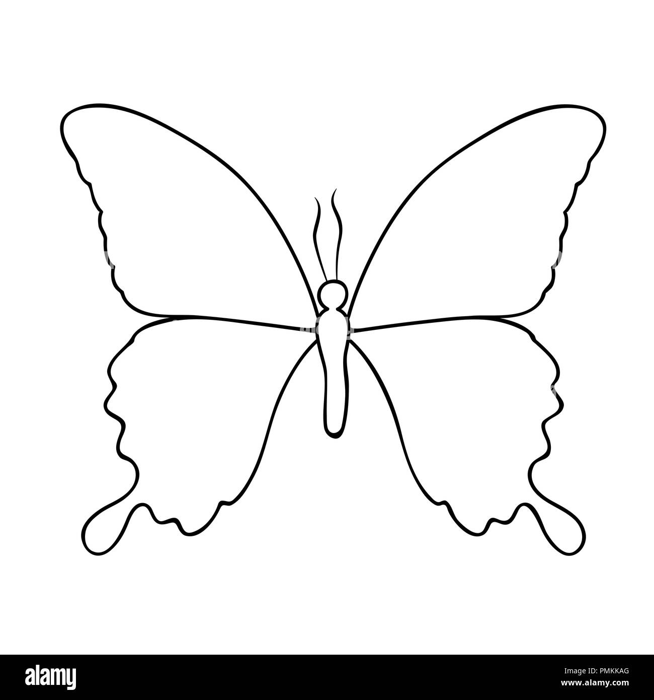 Butterfly line drawing isolated on a white background vector illustration eps10