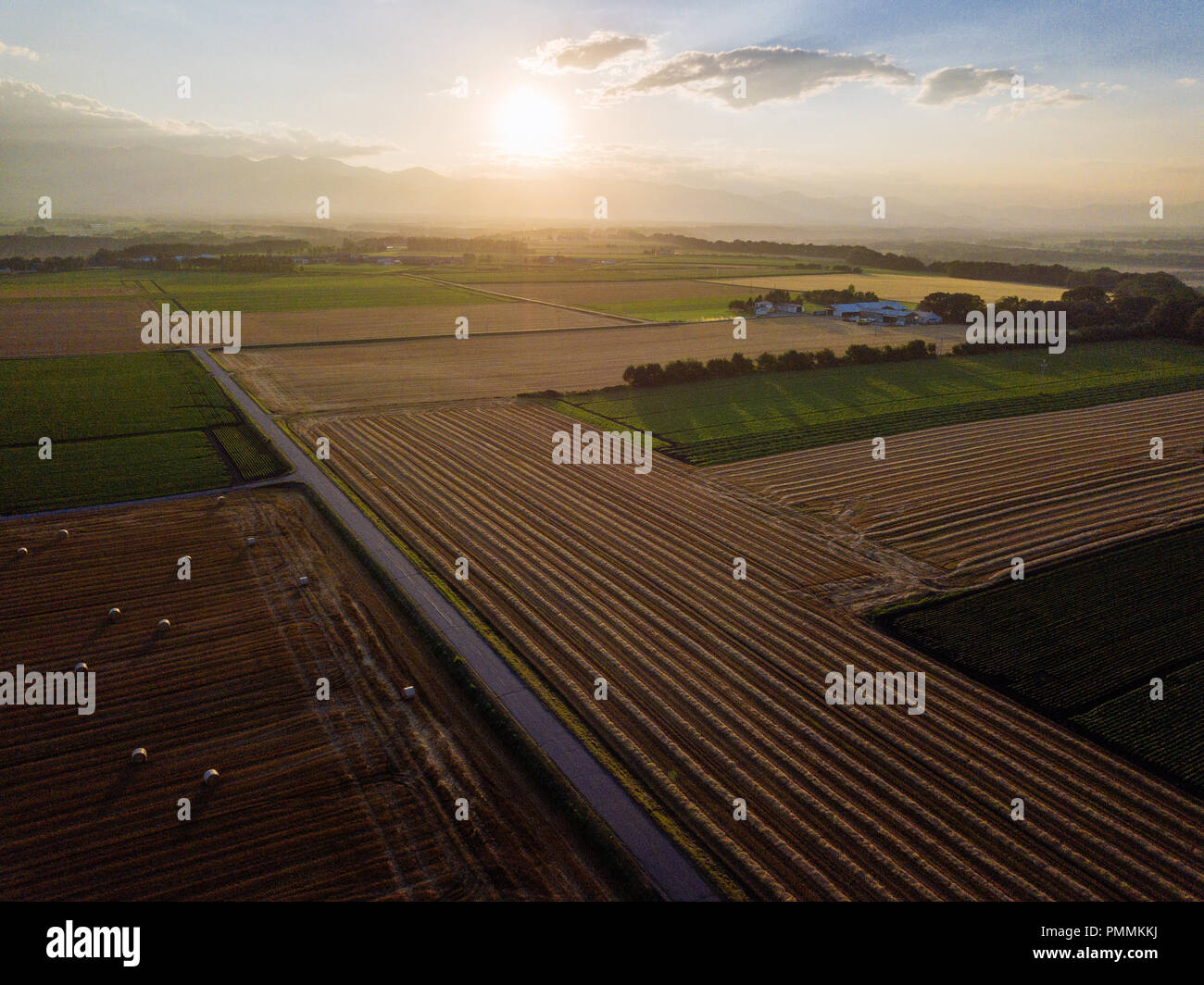 Aerial Phography of Wheat Field - Stock Image