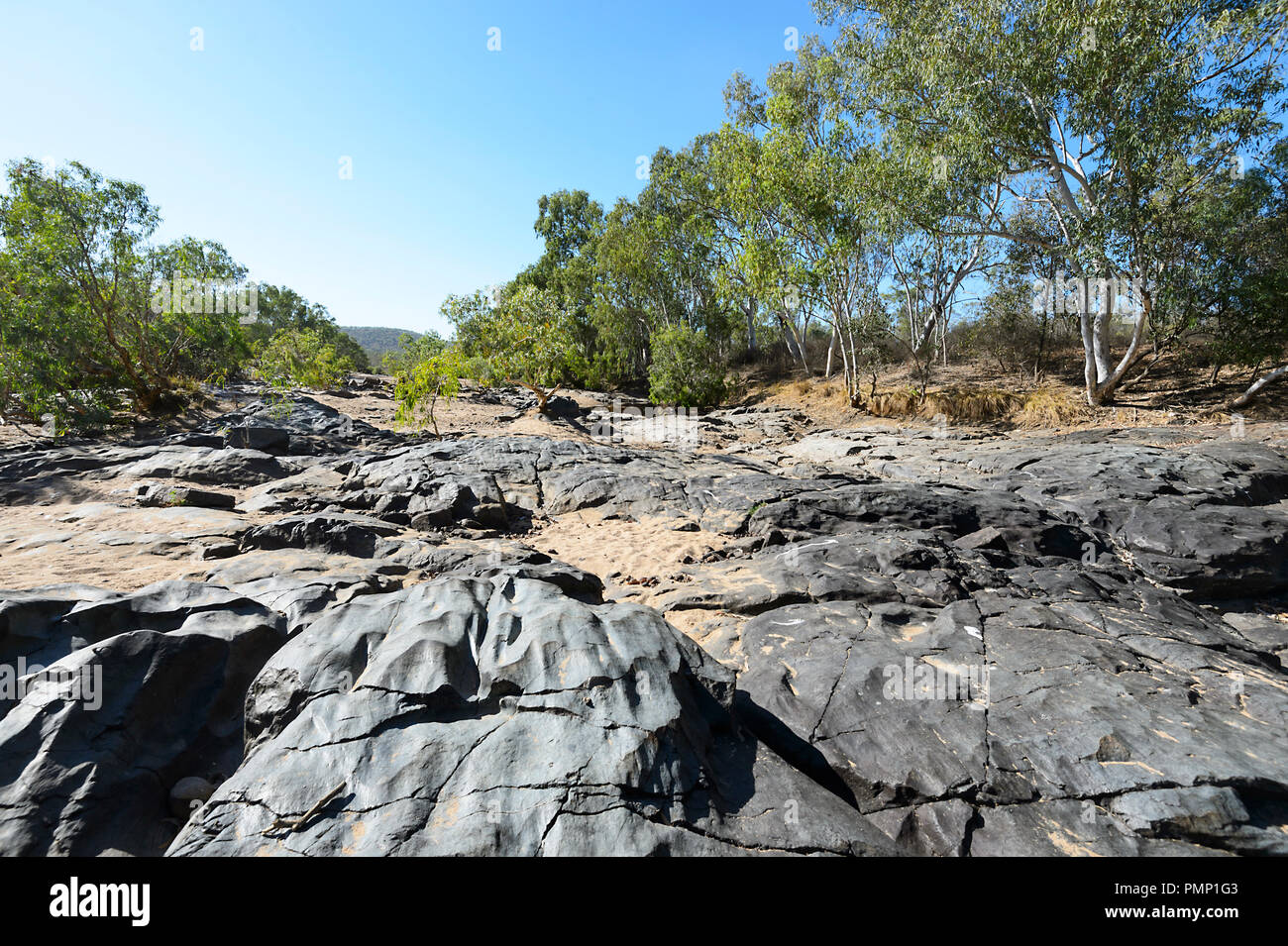 Dried riverbed or Creekbed in Emu Creek during the dry season, near Petford, North Queensland, QLD, Australia - Stock Image