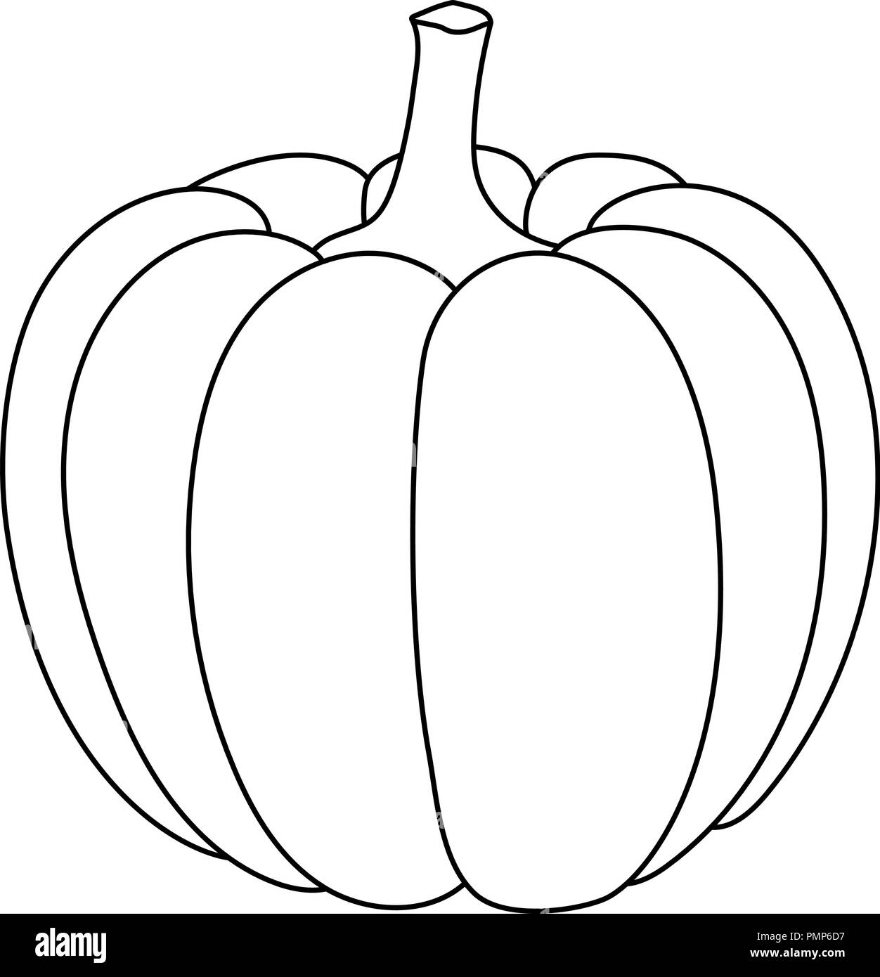 Pumpkin Outline Doodle Stock Vector Image Art Alamy