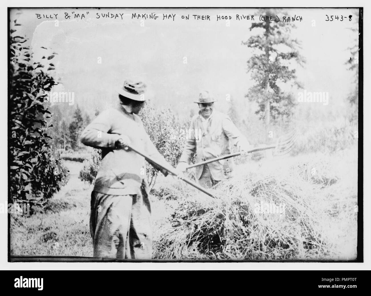 Billy and 'Ma' Sunday making hay on their Hood River (Ore.) ranch - Stock Image