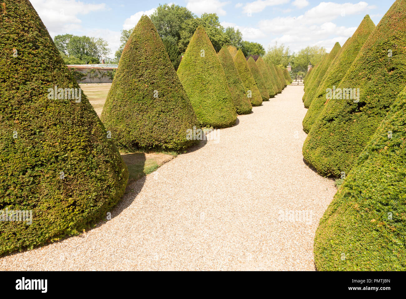 Topiary pathway in garden Littlecote House Hotel, Hungerford, Berkshire, England, UK - Stock Image