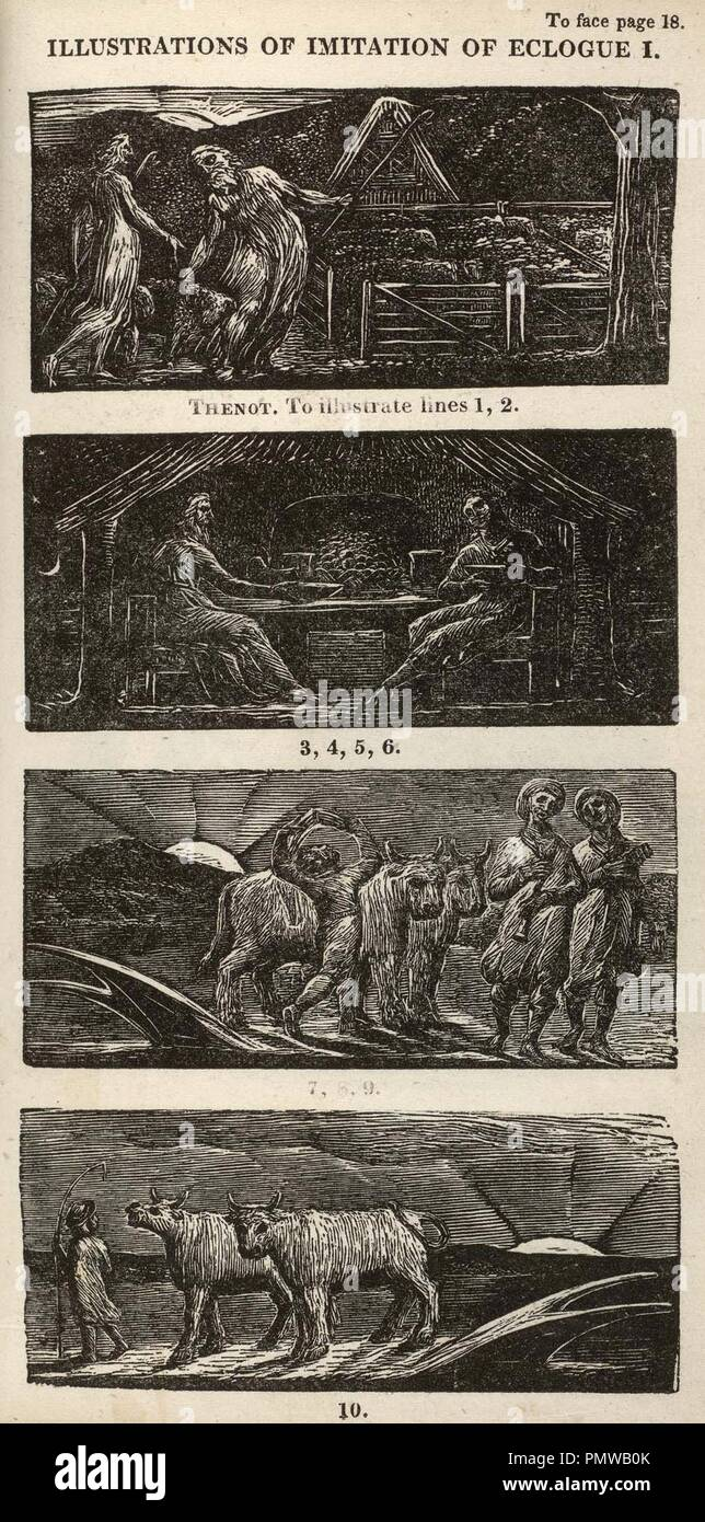 Blake woodcut The Pastorals of Virgil, copy 1, object 10 Illustrations of Imitation of Eclogue I. - Stock Image