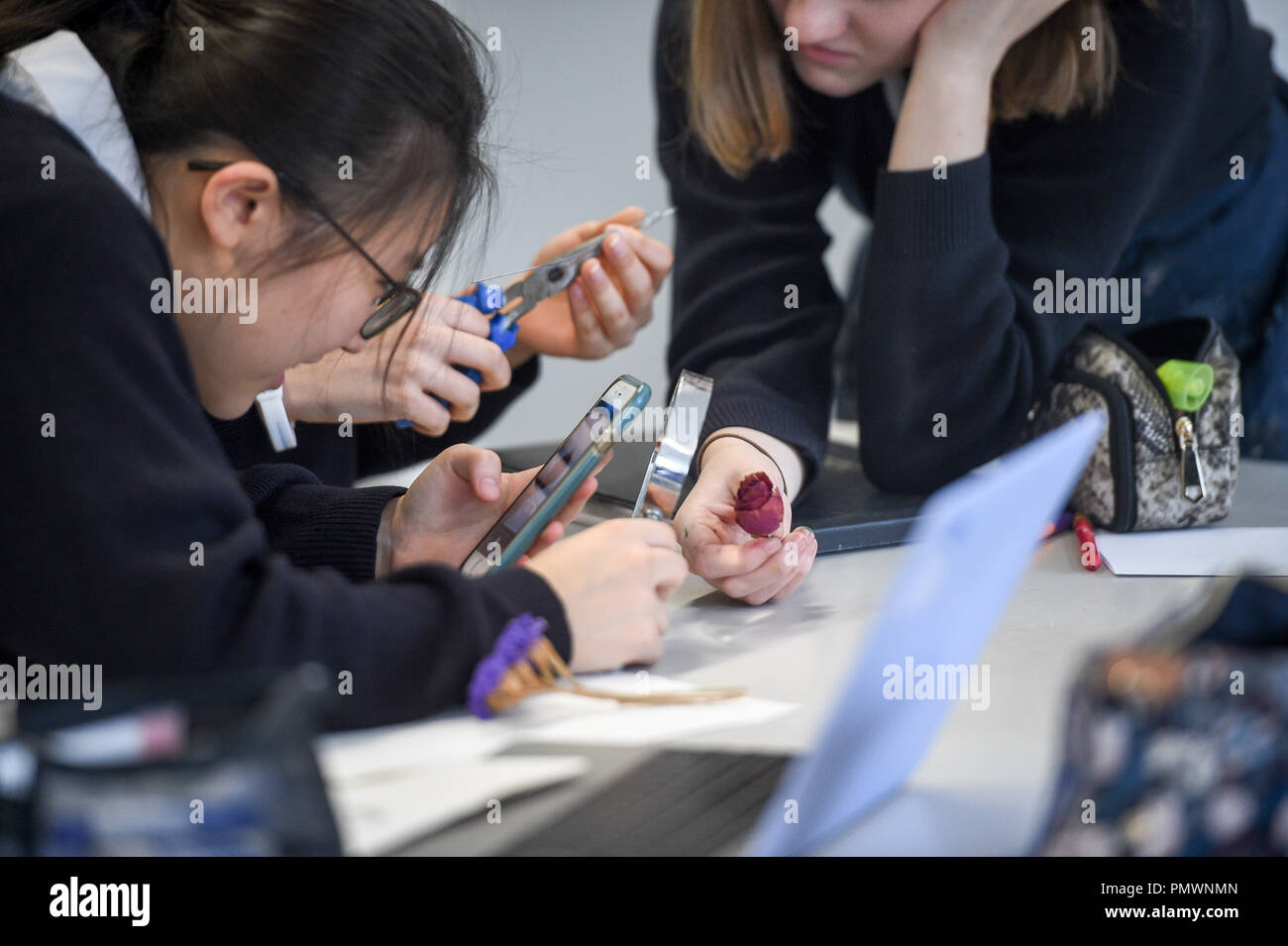 Students use a mobile phone in an art class at Royal High School Bath, which is a day and boarding school for girls aged 3-18 and also part of The Girls' Day School Trust, the leading network of independent girls' schools in the UK. Stock Photo