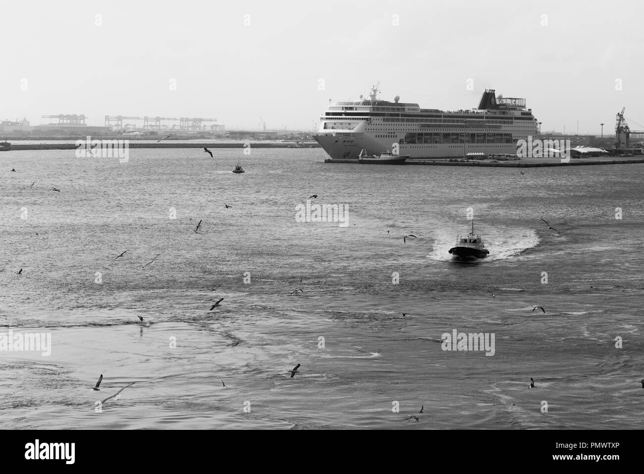 A pilot boat escorts a cruise ship (not in shot) out to sea with another cruise ship in the background. Gulls swirl above the disturbed water. - Stock Image