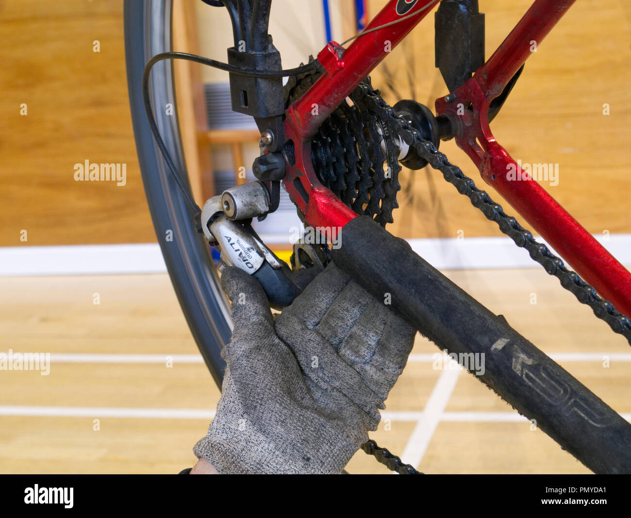 Mechanic servicing a rear derailleur - Stock Image