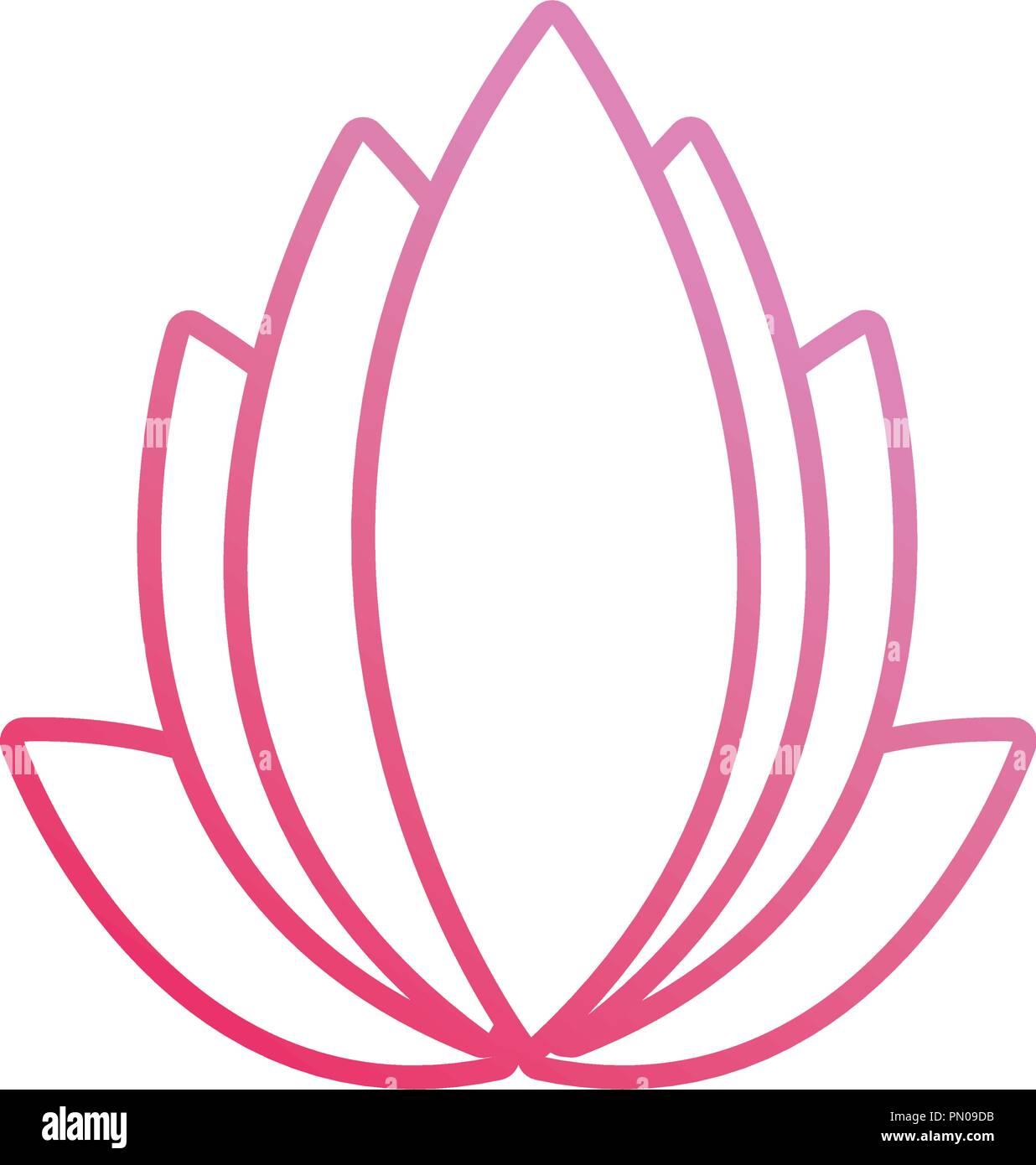 Lotus Flower Illustration Stock Photos Lotus Flower Illustration