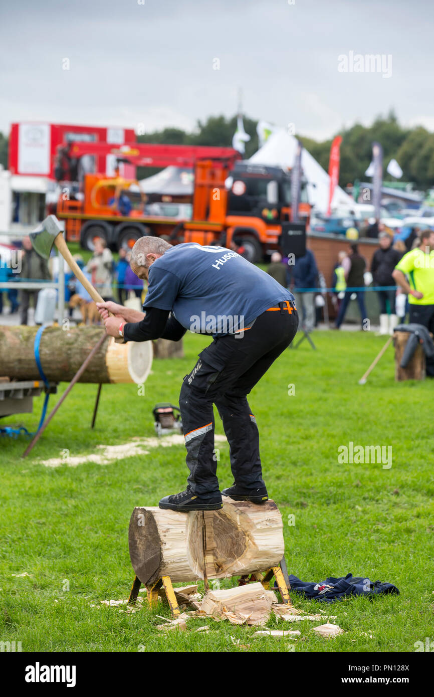 Lumberjacks competing in the log chopping competition at the Westmorland County Show, near Kendal, Cumbria, UK. Stock Photo