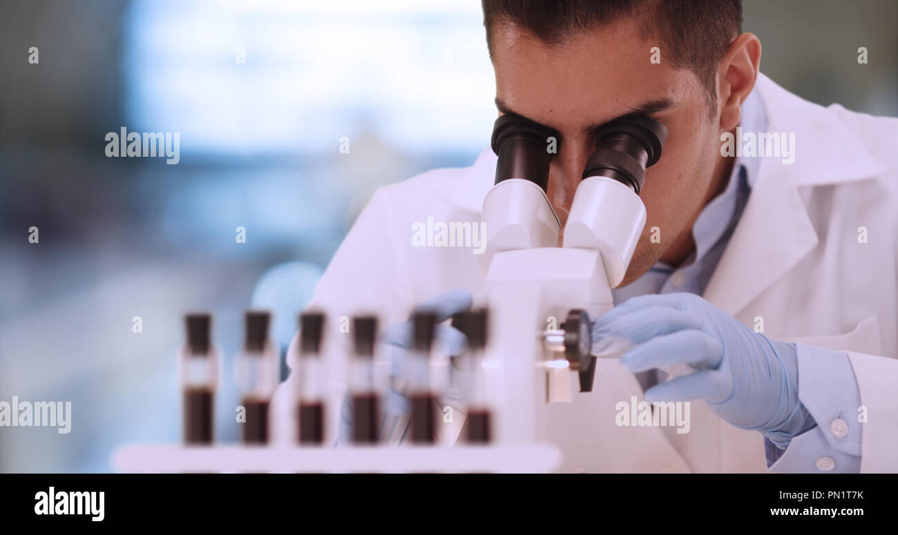 Hispanic male forensic scientist examining blood sample in lab - Stock Image
